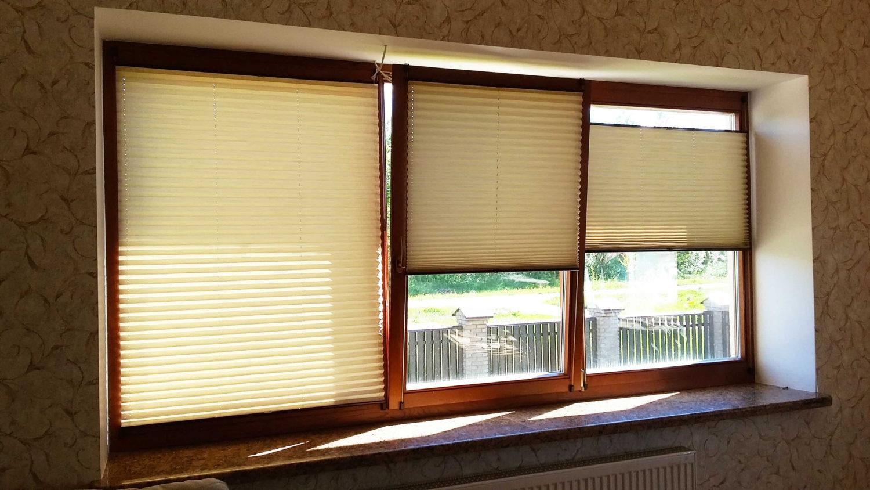 шторы плиссе на окне